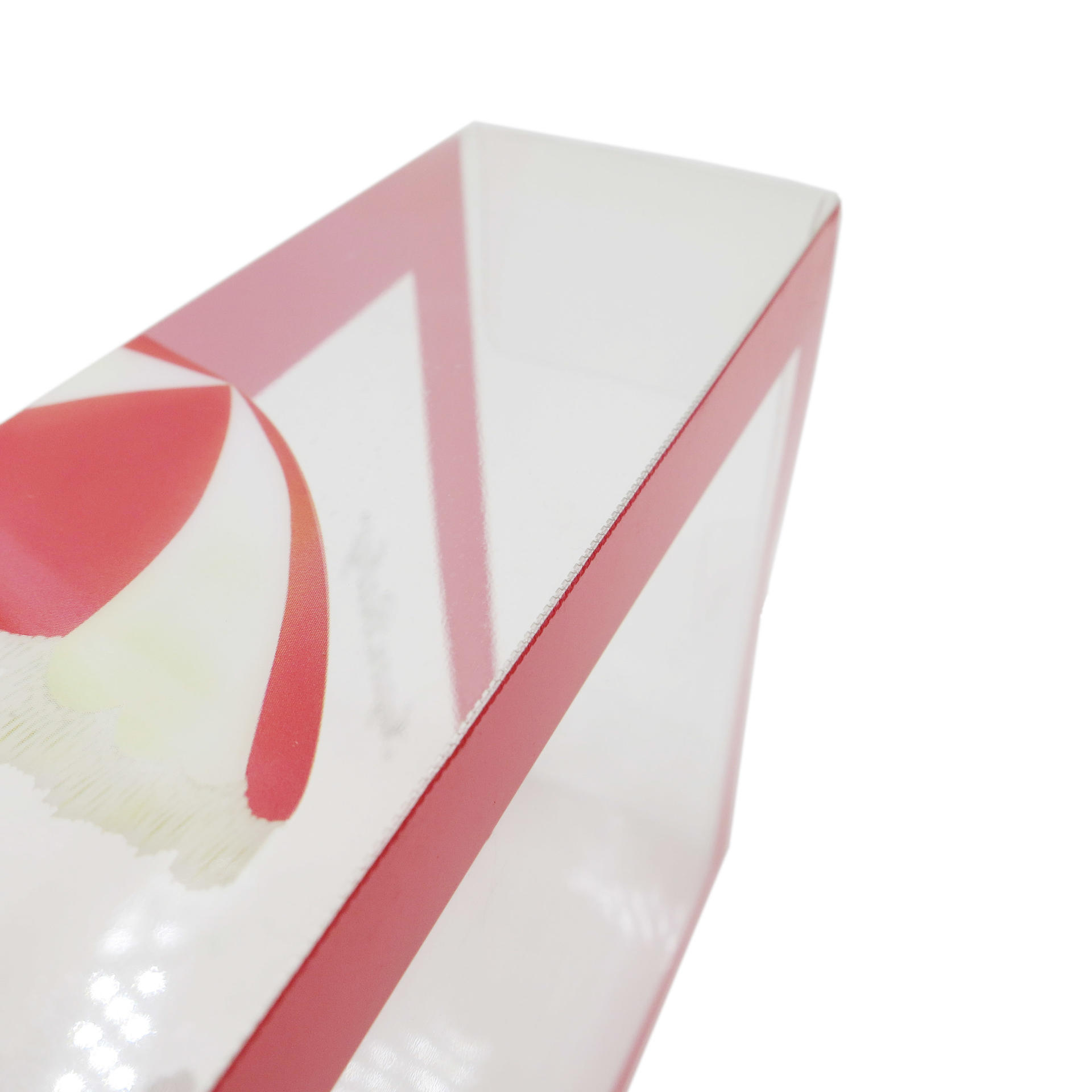 Clear PVC Plastic Packaging Box with Custom Printing