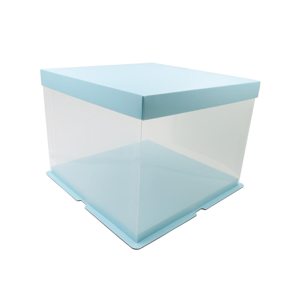 Food Grade PET Plastic Cake Box for 10