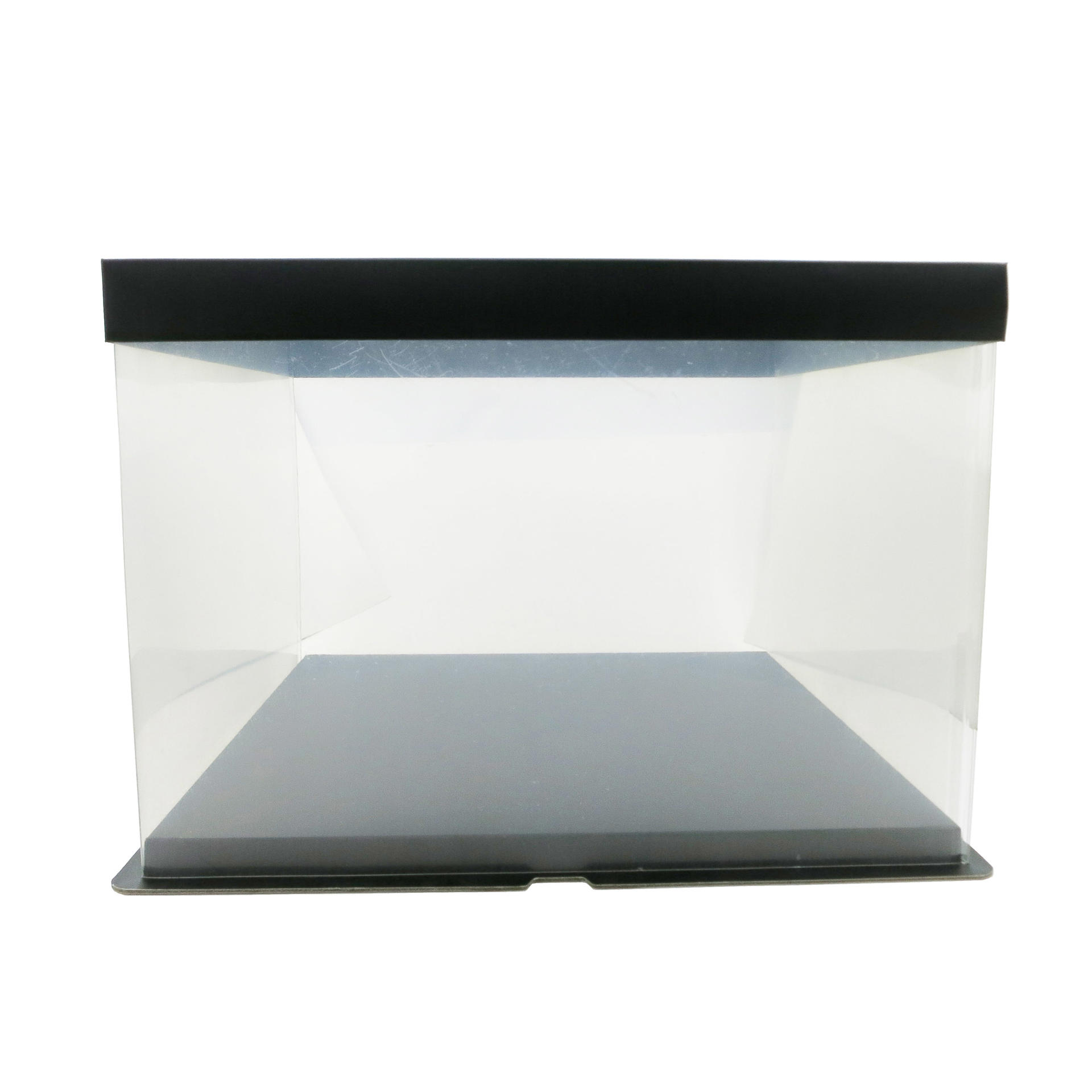 Food Grade PET Plastic Cake Box for 12